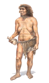 Neanderthalis